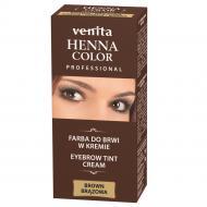 Professional Henna Color farba do brwi w kremie Brąz